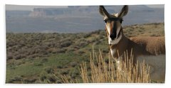 Wyoming Pronghorn Bath Towel