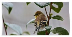 Goldfinch On Branch Bath Towel