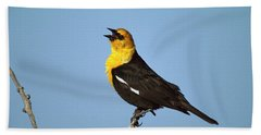 Yellow-headed Blackbird Singing Hand Towel by Tom Vezo