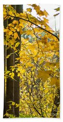 Yellow Maple Leaves Hand Towel