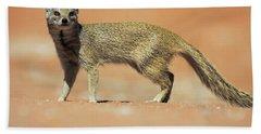 Yellow Mongoose In Kalahari Desert Bath Towel