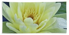 Yellow Water Lily Nymphaea Hand Towel