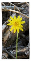 Hand Towel featuring the photograph Yellow Wildflower by Laurel Powell