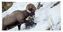 Yellowstone Bighorn Hand Towel