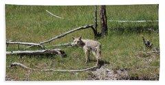 Yellowstone Coyote Bath Towel