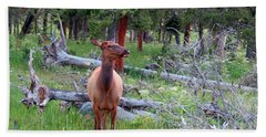 Yellowstone Moments. Doe Bath Towel