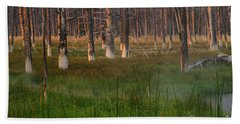 Hand Towel featuring the photograph Yellowstone Mysterious Morning by Teresa Zieba