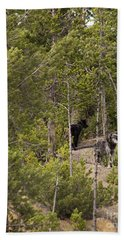 Hand Towel featuring the photograph Yellowstone Wolves by Belinda Greb