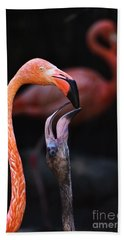 Young Flamingo Feeding Bath Towel