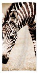 Zebra Foal Sepia Tones Hand Towel