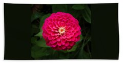 Zinnia In Bloom Square Hand Towel