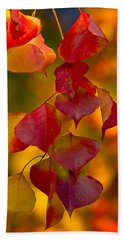 Hand Towel featuring the photograph Fall Color 1 by Dan Wells