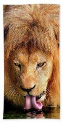 Lion Drinking Bath Towel