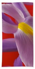 Photograph Of A Dutch Iris Bath Towel