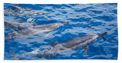 Spinner Dolphins Hand Towel