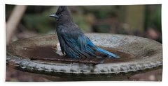 Bath Towel featuring the digital art Stellar Jay In The Birdbath by Carol Ailles