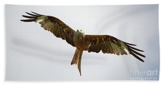 Red Kite In Flight Bath Towel