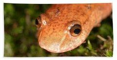 Spring Salamander Hand Towel