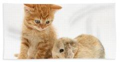 Kitten And Rabbit Hand Towel