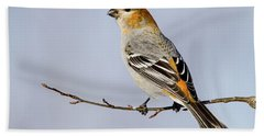 Female Pine Grosbeak Bath Towel