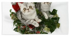 Kittens In A Miniature Sled Hand Towel