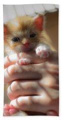 Kitty Bath Towel
