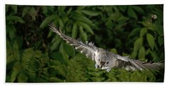 Tufted Titmouse In Flight Hand Towel