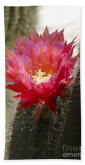 Red Cactus Flower Hand Towel by Jim And Emily Bush