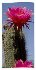 Pink Cactus Flower Hand Towel by Jim And Emily Bush