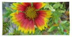 A Beautiful Blanket Flower Hand Towel by Ashish Agarwal