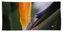 A Bird Of Paradise I Bath Towel