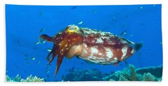 A Broadclub Cuttlefish, Kimbe Bay Hand Towel