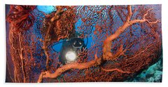 A Diver Peers Through A Red Sea Fan Hand Towel