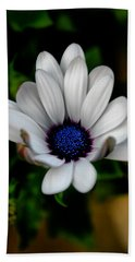 Bath Towel featuring the photograph African Daisy by Lynne Jenkins