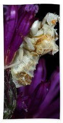 Bath Towel featuring the photograph Ambush Bug On Ironweed by Daniel Reed
