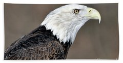 American Bald Eagle Hand Towel