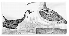American Ornithology Hand Towel