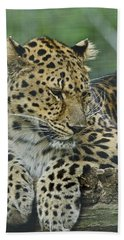 Bath Towel featuring the photograph Amur Leopard by JT Lewis
