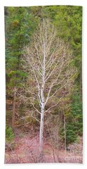 Aspen Tree Forest Road 249 Bath Towel