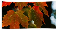 Hand Towel featuring the photograph Autumn Glory by Cheryl Baxter