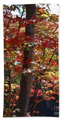 Autumn's Delight Bath Towel