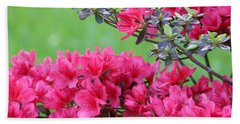 Hand Towel featuring the photograph Azalea by Andrea Anderegg