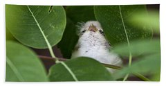 Hand Towel featuring the photograph Baby Bird Peeping In The Bushes by Jeannette Hunt