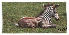 Baby Zebra Hand Towel