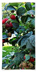 Backyard Berries Bath Towel