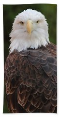 Bald Eagle Bath Towel by Coby Cooper