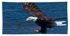 Bald Eagle On The Hunt Hand Towel