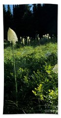Bear-grass II Bath Towel by Sharon Elliott