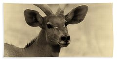 Beautiful Nyala Hand Towel