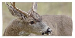 Hand Towel featuring the photograph Black-tailed Deer by Doug Herr